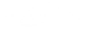 Transparent reverse Elementos Limited Logo